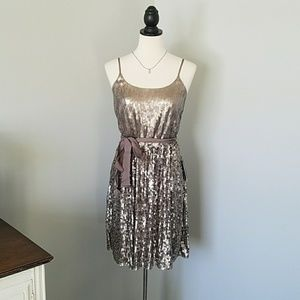 NWT Express Sequin Taupe Dress